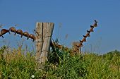 picture of auger  - Several old, rusty, and bent grain augers hang on a fence post in the long grass.