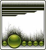 Green Web Background With Grass And Copy Space