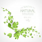 Abstract background with green leaves. Copy space