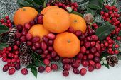 Cranberry and mandarin orange christmas fruit with holly, mistletoe, ivy and snow covered fir.