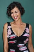 LOS ANGELES - JUL 8:  Catherine Bell at the Crown Media Networks July 2014 TCA Party at the Private