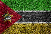 Mozambique Flag Color Grass Texture Background