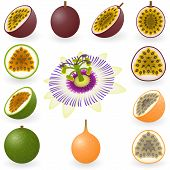 Icon Set Passion Fruit