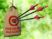 Procurement Management - Arrows Hit in Red Mark Target.