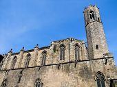 La Seu Cathedral In Barcelona, Spain