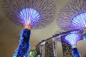 Gardens by the bay Supertree Grove and Marina Bay Sands Singapore