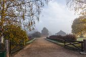 The Road Leading To The Estate Trigorskoye