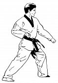 Forward Stance Low Block (Tae Kwon Do)
