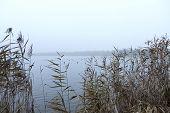 Gloomy Morning On A Lake.