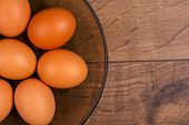 Eggs the delicious and nutritious product