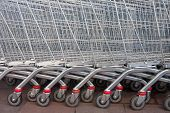 Row Of Supermarket Shopping Cart Trolleys