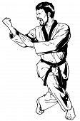 Reinforced Outward Block To The Rear While Advancing (Taekwondo)