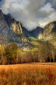 Meadow Yosemite Valley