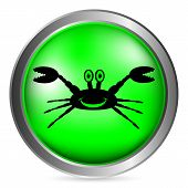 Crab Button