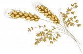 Stylized ear of wheat