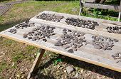 Archaeological Objects Found During Excavations At The Troitskiy Excavation In Veliky Novgorod