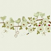 Cute Birds On A Branch With Roses