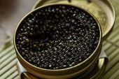Black caviar in small round metal tin