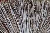 Broom Of Straw Closeup Texture