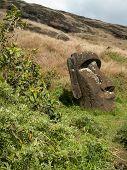 Moai In The Nursery