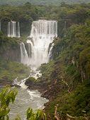 Iguazu Falls Portrait