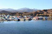 Lake Mohave Marina