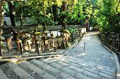 Famous traditional Japanese lanterns on the way to Grand Kasuga shrine, Nara - Japan