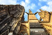 picture of koln  - Facade of the Dom church in the city Cologne lit by evening sun - JPG