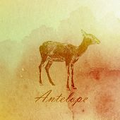 vector vintage illustration of a watercolor antelope on the old  paper texture