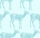 vector  illustration of an antelope. seamless animal pattern
