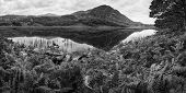 Beautiful Black And White Mountain Landscape With Summer Foliage And River
