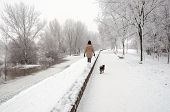 Girl Walking The Dog On Snowy Winter Day