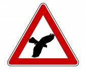 Bird Swoop Warning Sign