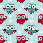 pic of owls  - Merry Christmas - JPG