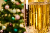 Champagne Glass On Defocused Background Living Room With Christmas Tree
