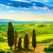 Tuscany, Rural Sunset Landscape. Countryside Farm, White Road And Cypress Trees.
