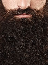 foto of long beard  - Portrait of a man with long beard - JPG