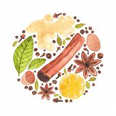 image of christmas spices  - Vector watercolor circle design made of spices for mulled wine - JPG