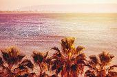 pic of tilt  - Sea View Background with Blurred Tilt - JPG
