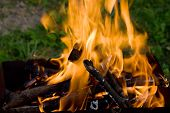 picture of bonfire  - Camping bonfire with flame and firewood in the dark closeup view - JPG