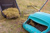 foto of dry grass  - Spring gardening - JPG