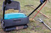 image of dry grass  - Spring gardening - JPG