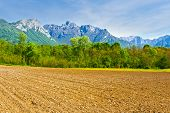 picture of italian alps  - Plowed Fields in the Foothills of the Italian Alps - JPG
