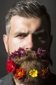 stock photo of long beard  - Portrait of beautiful unshaven man with long beard and hendlebar flowerbed moustache with marigolds flowers orange red and yellow violet purple color on black background vertical picture - JPG