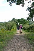 Elderly Couple Hiking On Path