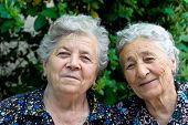 picture of old couple  - Portrait of two smiling and happy old ladies - JPG