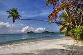 Tropical beach on Ko Mak island. Kingdom Thailand.