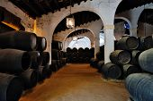 Cellar with barrels of sherry. Spain