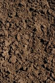 stock photo of humus  - soil background - JPG