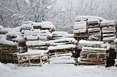 Wood And Palets Under The Snow. Winterfield poster